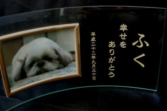 ペットのメモリアルフォトフレーム(ヨコ)