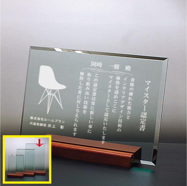ガラス盾 DSP-2A(大)
