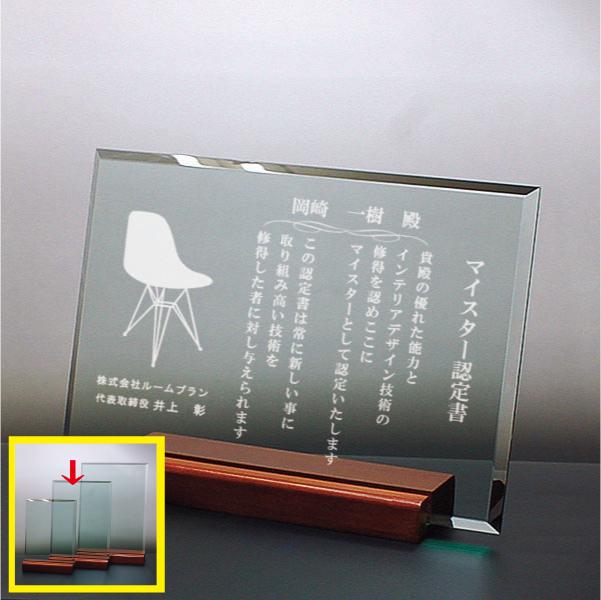 ガラス盾 DSP-2B(中)