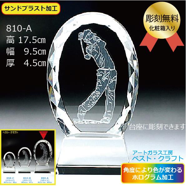 ゴルフ 810A 17.5cm