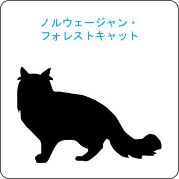 ネコのシルエット…8