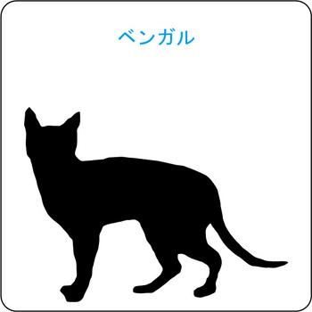 ネコのシルエット…10