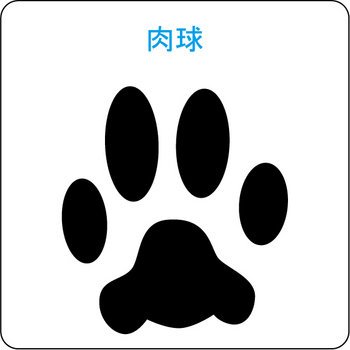 犬のシルエット…1