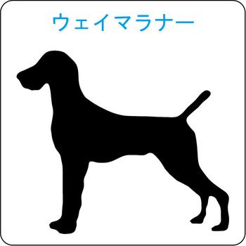 イヌのシルエット…10