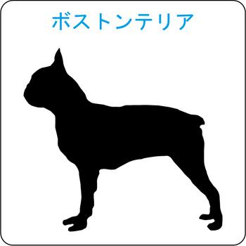 イヌのシルエット…49