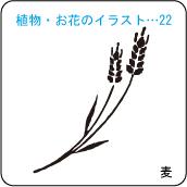 植物・お花のイラスト…22