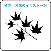 植物・お花のイラスト…24