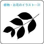 植物・お花のイラスト…31