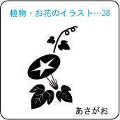 植物・お花のイラスト…38