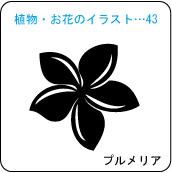 植物・お花のイラスト…43