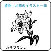 植物・お花のイラスト…45
