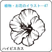 植物・お花のイラスト…47