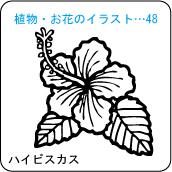 植物・お花のイラスト…48