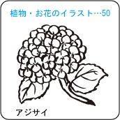 植物・お花のイラスト…50