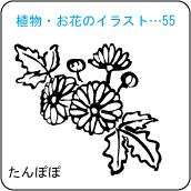 植物・お花のイラスト…