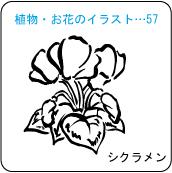 植物・お花のイラスト…57